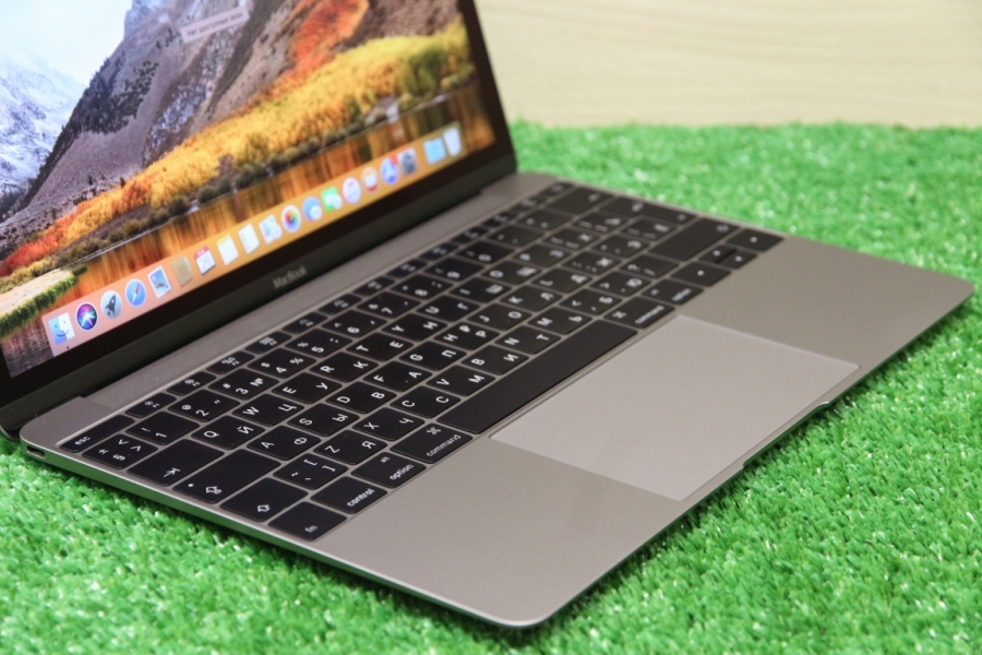 MacBook Retina 12 Early 2015