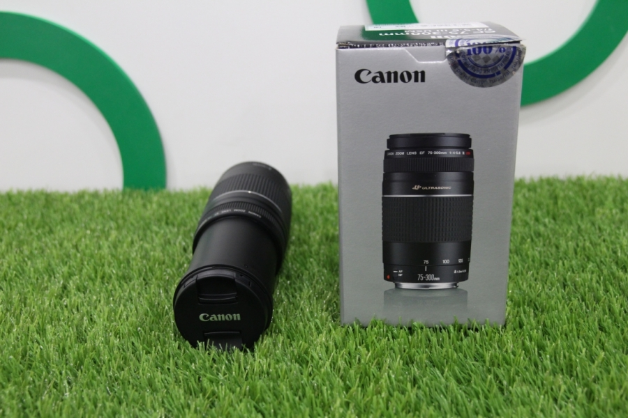 Canon EF 75-300mm f/4-5.6
